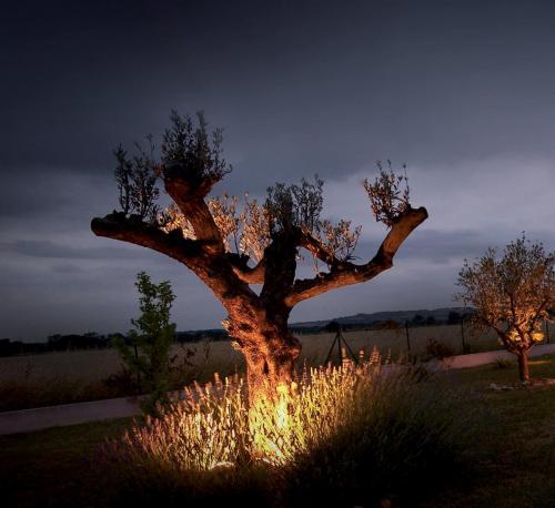 jardin en lumière Easy Connect