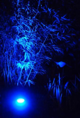 éclairage bleu pour jardin Easy Connect