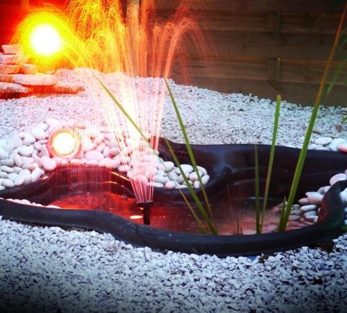 éclairage bassin Easy Connect
